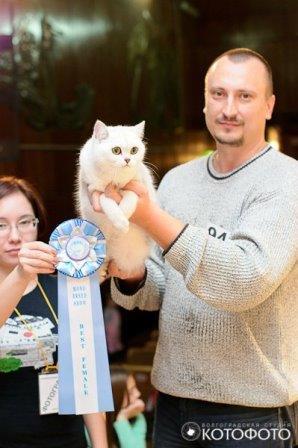 Novosibirsk-130615-02